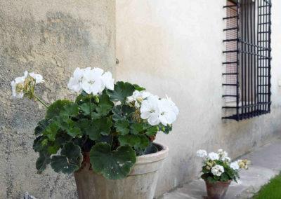hotel-casa-acacio-san-clemente-cuenca-jardin-21