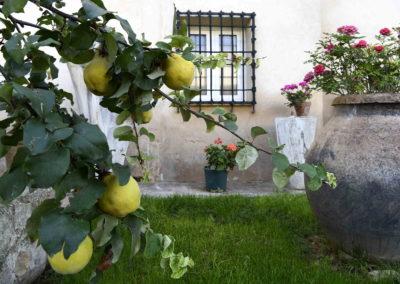 hotel-casa-acacio-san-clemente-cuenca-jardin-33