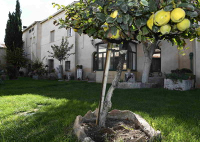 hotel-casa-acacio-san-clemente-cuenca-jardin-41