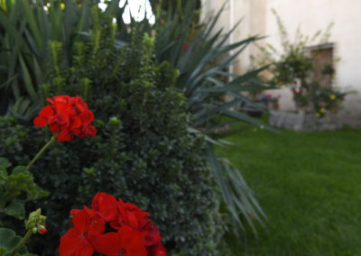 hotel-casa-acacio-san-clemente-cuenca-jardin-46